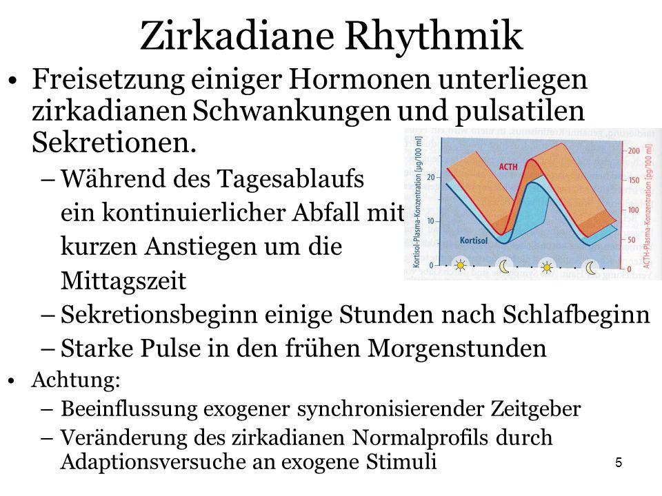 5 Zirkadiane Rhythmik Freisetzung einiger Hormonen unterliegen zirkadianen Schwankungen und pulsatilen Sekretionen. –Während des Tagesablaufs ein kont