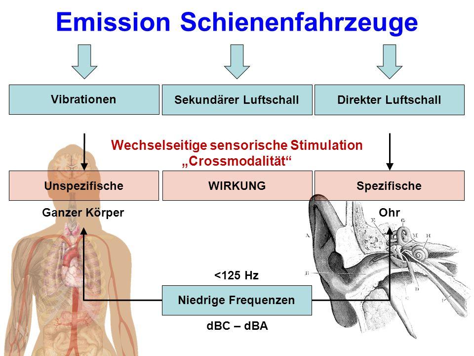 """Emission Schienenfahrzeuge Vibrationen Sekundärer LuftschallDirekter Luftschall UnspezifischeSpezifischeWIRKUNG Ganzer KörperOhr Niedrige Frequenzen dBC – dBA <125 Hz Wechselseitige sensorische Stimulation """"Crossmodalität"""