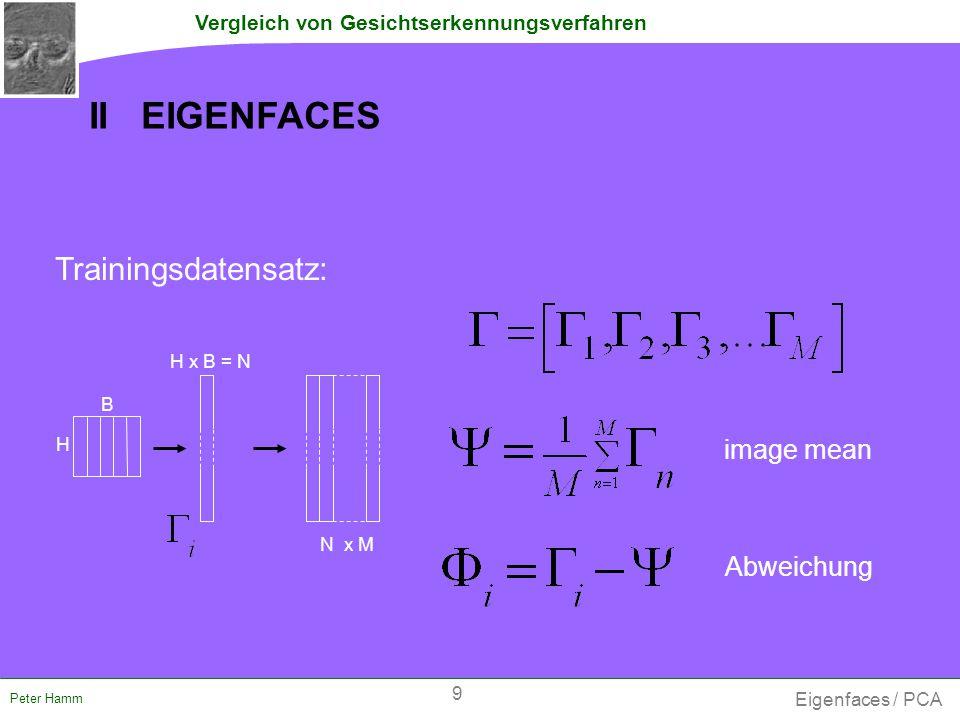 Vergleich von Gesichtserkennungsverfahren Peter Hamm  PCs = Eigenvektoren der Kovarianzmatrix der _ _ _ _ _ _ _ _ _ gesamten Bildmatrix - Problem: C hat die Dimension N x N .