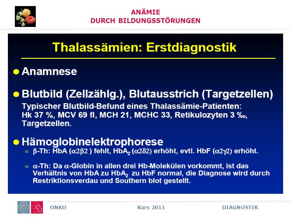 ONKO Kurs 2011 DIAGNOSTIK ANÄMIE DURCH BILDUNGSSTÖRUNGEN