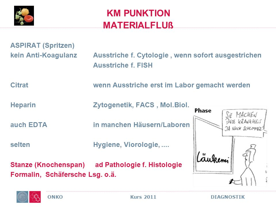 ONKO Kurs 2011 DIAGNOSTIK KM PUNKTION MATERIALFLUß ASPIRAT (Spritzen) kein Anti-KoagulanzAusstriche f. Cytologie, wenn sofort ausgestrichen Ausstriche