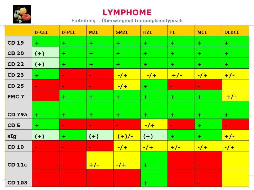 ONKO Kurs 2011 DIAGNOSTIK LYMPHOME Einteilung = Ü berwiegend Immunph ä notypisch WHO Klassifikation Flandrin, H. Konrad Muller-Hermelink, James Vardim