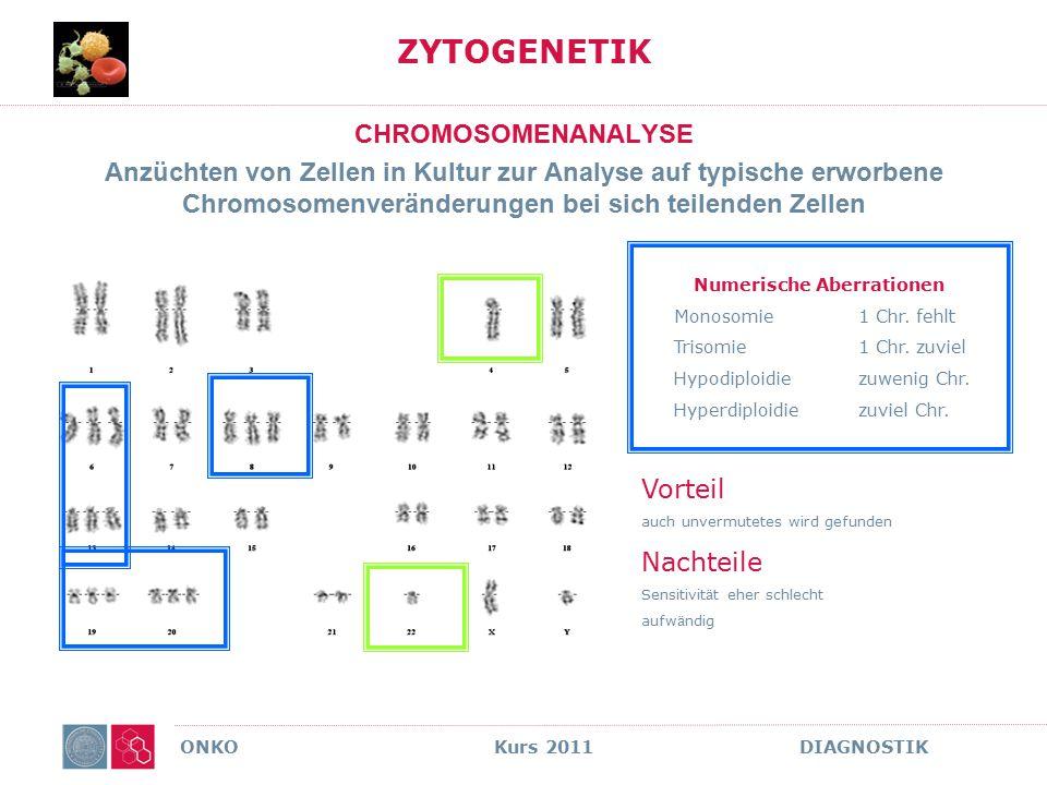 ONKO Kurs 2011 DIAGNOSTIK ZYTOGENETIK CHROMOSOMENANALYSE Anzüchten von Zellen in Kultur zur Analyse auf typische erworbene Chromosomenveränderungen be