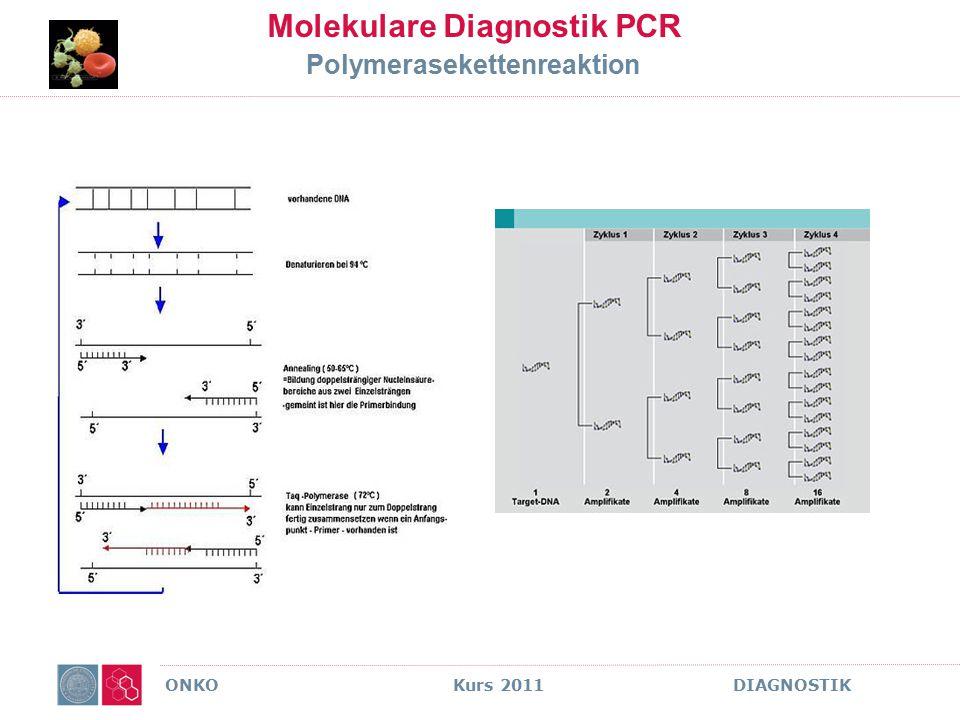 ONKO Kurs 2011 DIAGNOSTIK Molekulare Diagnostik PCR Polymerasekettenreaktion