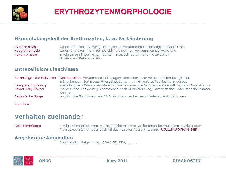 ONKO Kurs 2011 DIAGNOSTIK LYMPHOME MULTIPLES MYELOM RISIKOFAKTOREN = ZYTOGENETISCH
