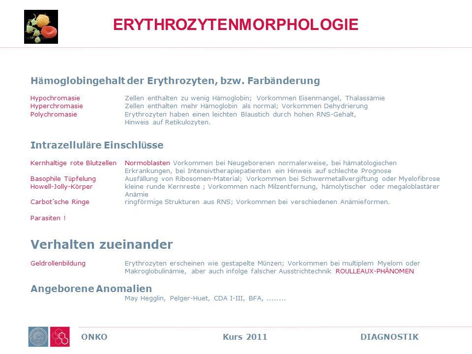 ONKO Kurs 2011 DIAGNOSTIK ERYTHROZYTENMORPHOLOGIE H ä moglobingehalt der Erythrozyten, bzw. Farb ä nderung HypochromasieZellen enthalten zu wenig H ä