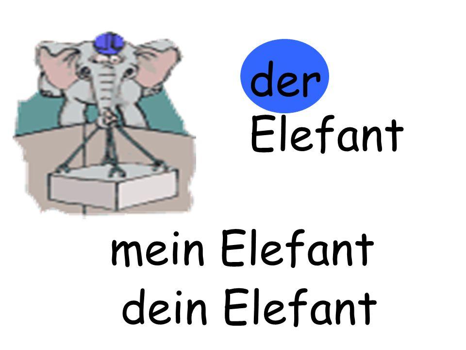 der Elefant m…… Elefant mein Elefant d…… Elefant dein Elefant