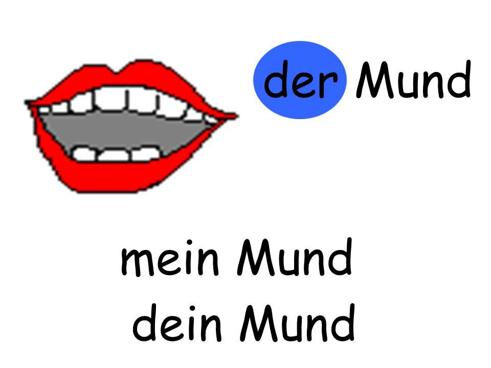 der Mund m…… Mund mein Mund d…… Mund dein Mund