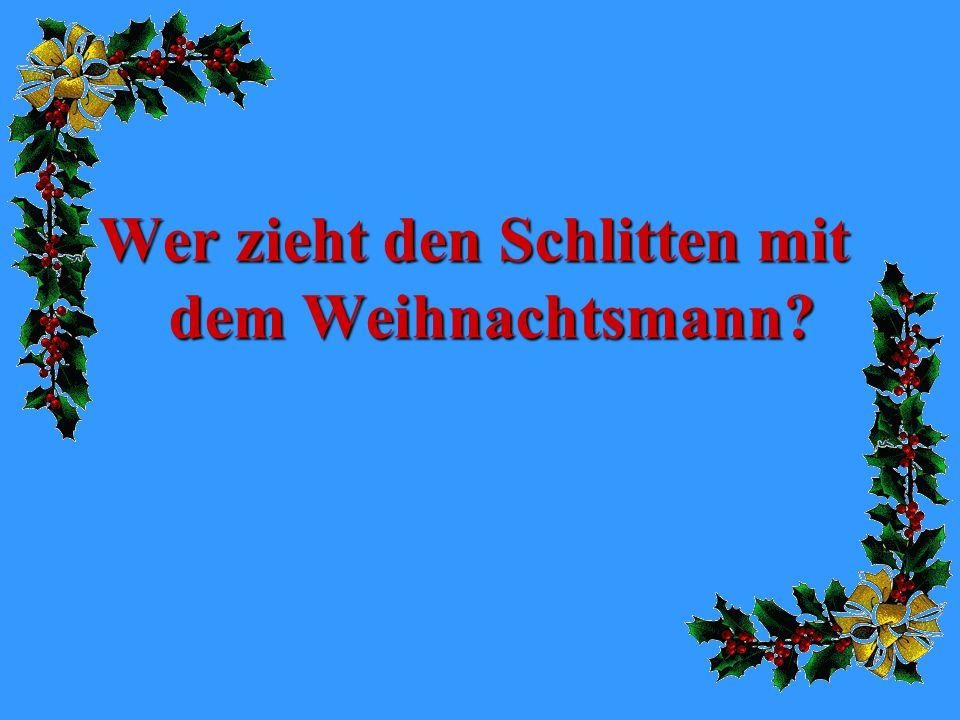 Wer zieht den Schlitten mit dem Weihnachtsmann?