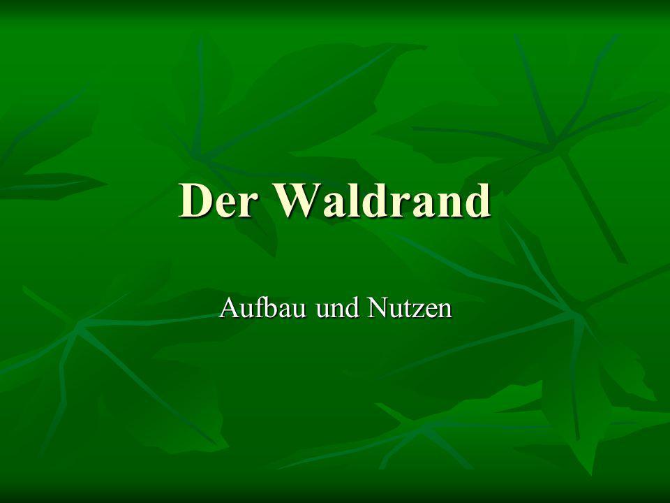 Gliederung I) Allgemeines II) Aufbau 1.stufiger Aufbau 1.