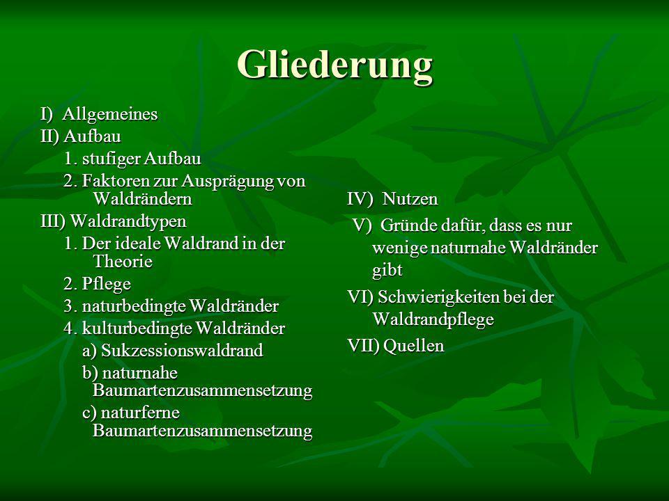 Waldrandtypen – naturbedingte Waldränder  Sehr selten in Mitteleuropa  Vorkommen: natürliche Waldgrenzen an Gewässern, Mooren, Felsen und Dünen  Struktur: dichter Waldrand an Gewässern (Galeriewald) oder lichter Übergang an trockenen Standorten
