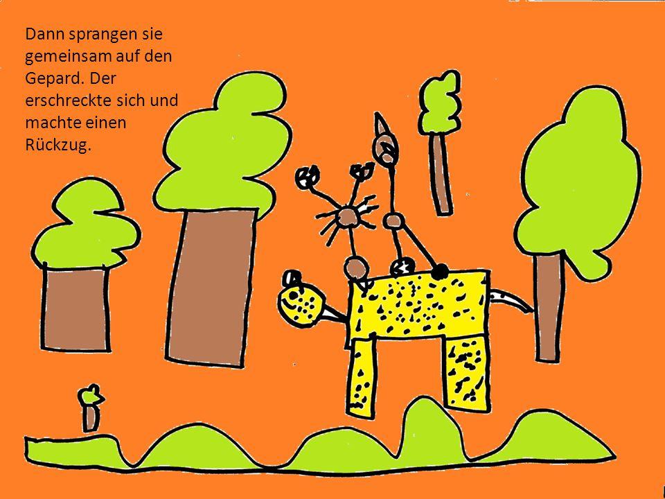 Dann kniffen sie erst mal und schleppten den Gepard in eine der beiden Höhlen.