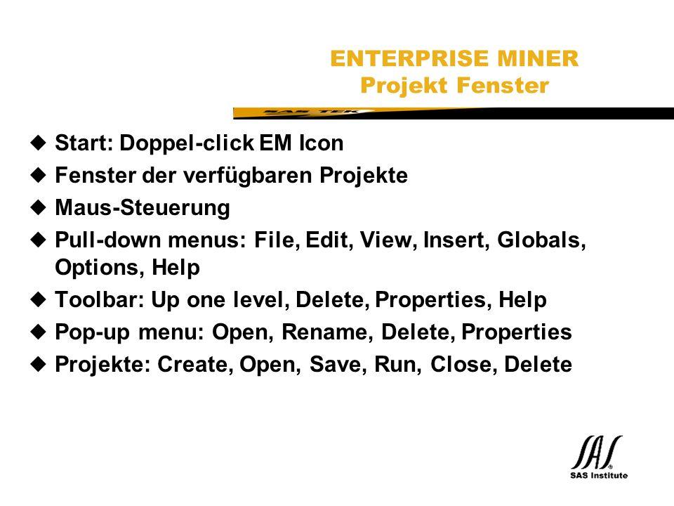 SAS Technical Expertise and Know-how ® ENTERPRISE MINER Projekt Fenster uStart: Doppel-click EM Icon uFenster der verfügbaren Projekte uMaus-Steuerung uPull-down menus: File, Edit, View, Insert, Globals, Options, Help uToolbar: Up one level, Delete, Properties, Help uPop-up menu: Open, Rename, Delete, Properties uProjekte: Create, Open, Save, Run, Close, Delete