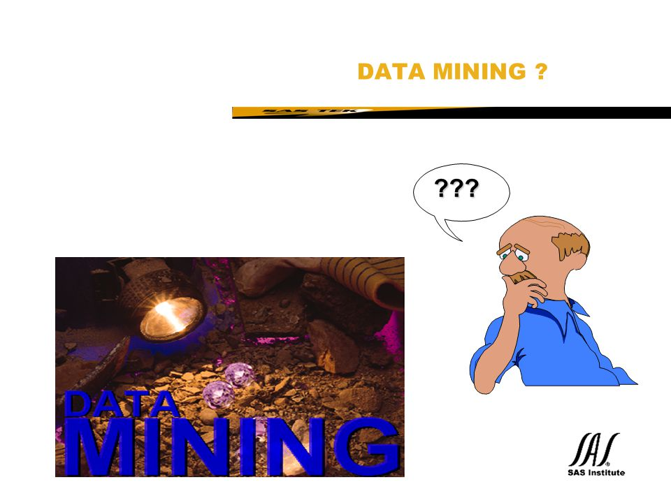 SAS Technical Expertise and Know-how ® SAS Data Mining Solution Currently (Feb 98)  Data Warehousing incl.