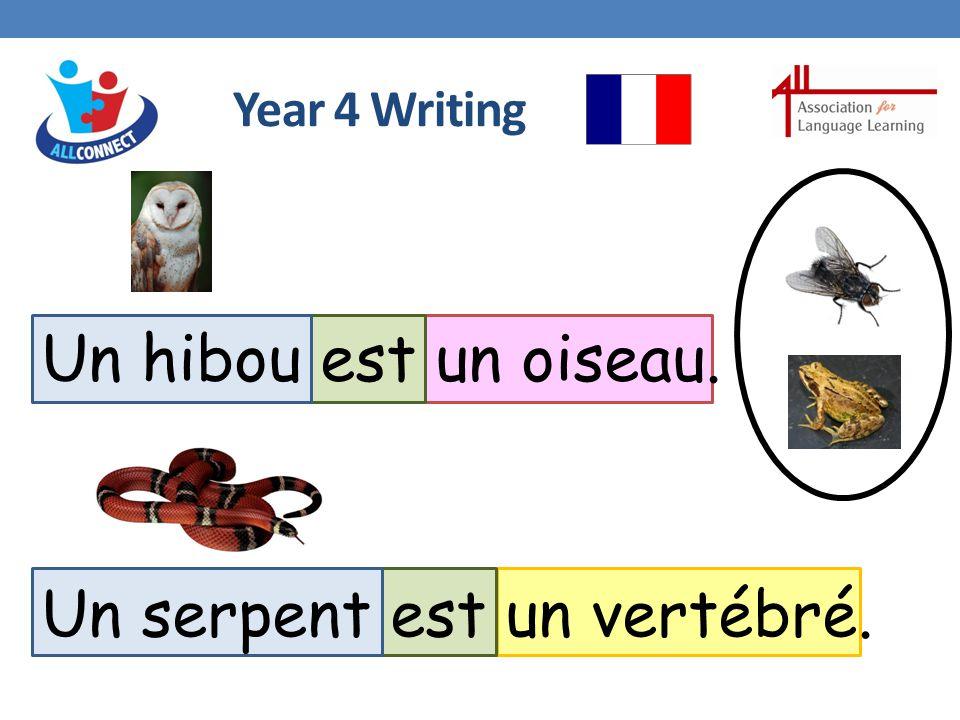 Year 4 Writing Un hibou est un oiseau. Un serpent est un vertébré.