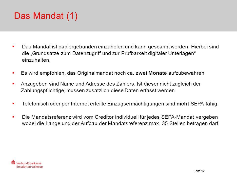 """Seite 12 Das Mandat (1)  Das Mandat ist papiergebunden einzuholen und kann gescannt werden. Hierbei sind die """"Grundsätze zum Datenzugriff und zur Prü"""