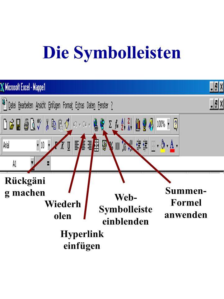 Die Symbolleisten Rückgäni g machen Wiederh olen Hyperlink einfügen Web- Symbolleiste einblenden Summen- Formel anwenden
