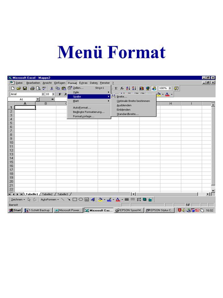 Menü Format