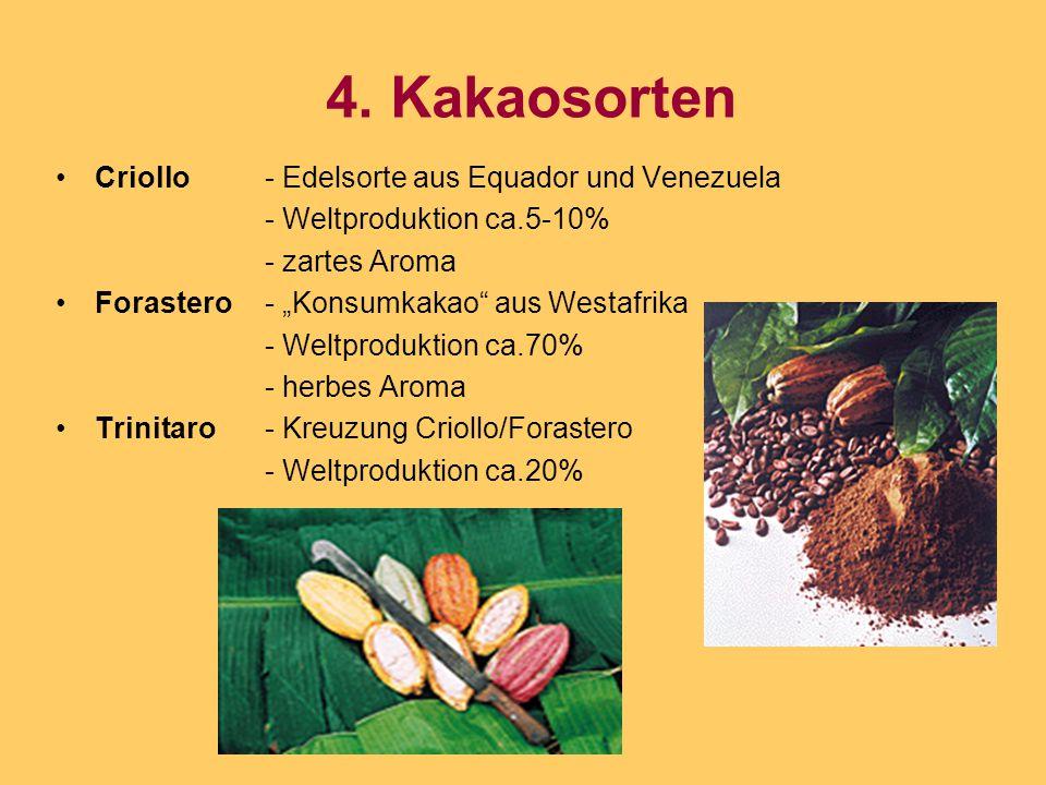"""4. Kakaosorten Criollo- Edelsorte aus Equador und Venezuela - Weltproduktion ca.5-10% - zartes Aroma Forastero- """"Konsumkakao"""" aus Westafrika - Weltpro"""