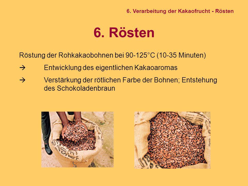 6. Rösten Röstung der Rohkakaobohnen bei 90-125°C (10-35 Minuten)  Entwicklung des eigentlichen Kakaoaromas  Verstärkung der rötlichen Farbe der Boh