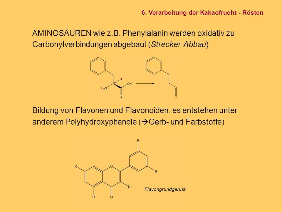 AMINOSÄUREN wie z.B. Phenylalanin werden oxidativ zu Carbonylverbindungen abgebaut (Strecker-Abbau) Bildung von Flavonen und Flavonoiden; es entstehen