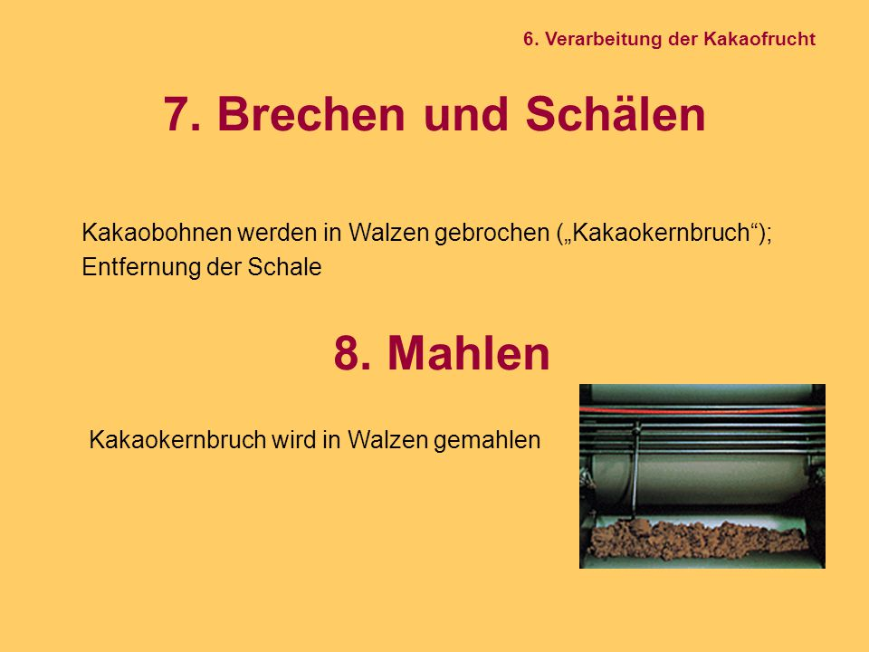 """7. Brechen und Schälen 6. Verarbeitung der Kakaofrucht Kakaokernbruch wird in Walzen gemahlen 8. Mahlen Kakaobohnen werden in Walzen gebrochen (""""Kakao"""
