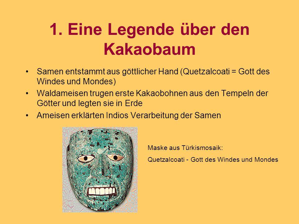 1. Eine Legende über den Kakaobaum Samen entstammt aus göttlicher Hand (Quetzalcoati = Gott des Windes und Mondes) Waldameisen trugen erste Kakaobohne