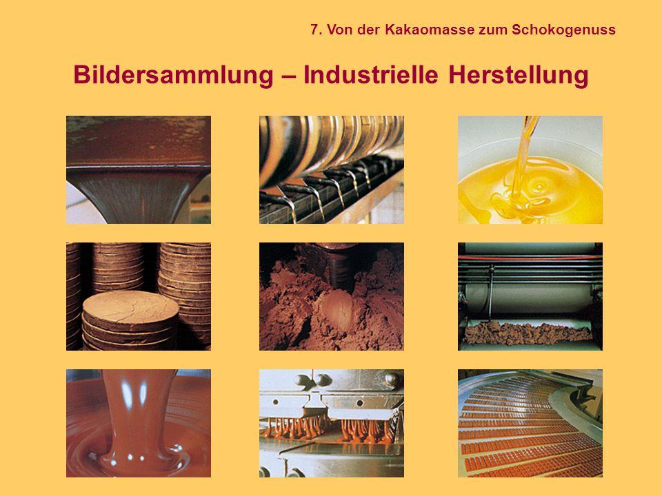 Bildersammlung – Industrielle Herstellung 7. Von der Kakaomasse zum Schokogenuss