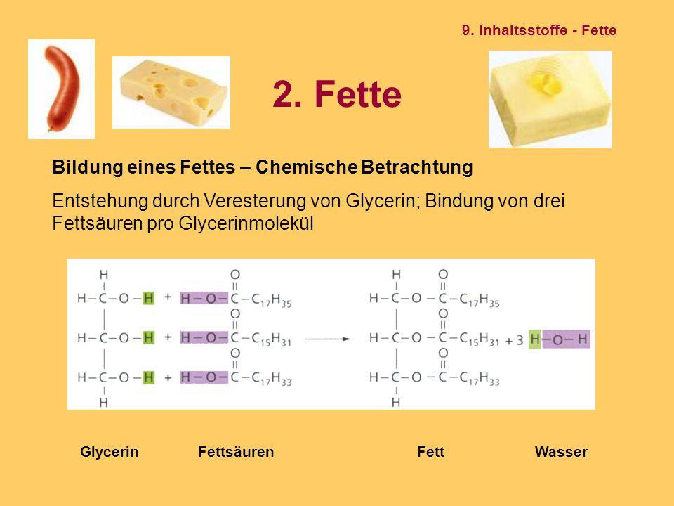 2. Fette Bildung eines Fettes – Chemische Betrachtung Entstehung durch Veresterung von Glycerin; Bindung von drei Fettsäuren pro Glycerinmolekül Glyce