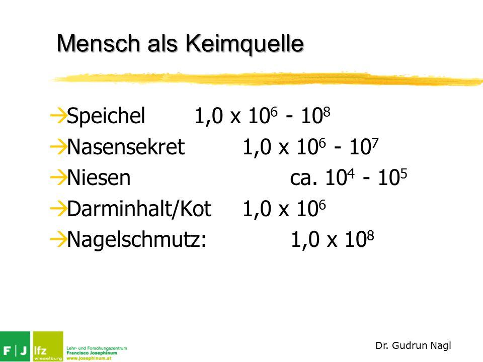 Mensch als Keimquelle  Speichel1,0 x 10 6 - 10 8  Nasensekret1,0 x 10 6 - 10 7  Niesenca.