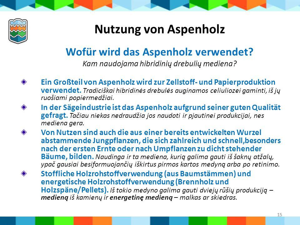 15 Ein Großteil von Aspenholz wird zur Zellstoff- und Papierproduktion verwendet. Tradiciškai hibridinės drebulės auginamos celiuliozei gaminti, iš jų