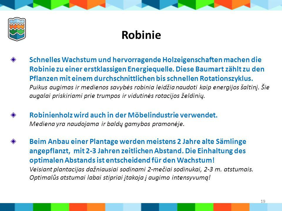 19 Robinie Schnelles Wachstum und hervorragende Holzeigenschaften machen die Robinie zu einer erstklassigen Energiequelle. Diese Baumart zählt zu den