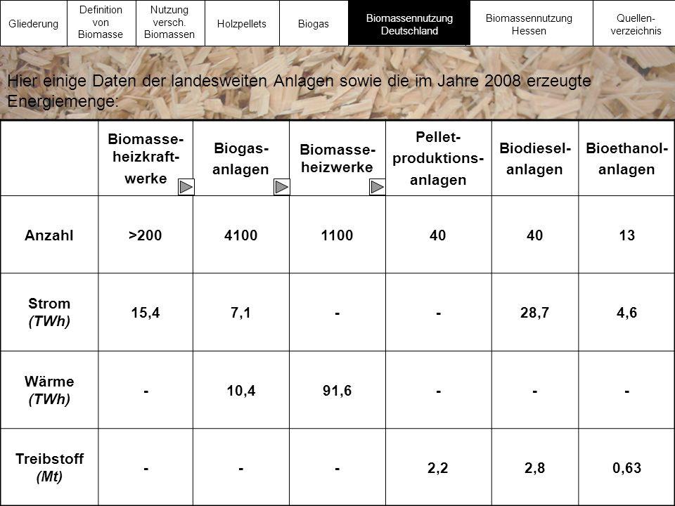 Biomasse- heizkraft- werke Biogas- anlagen Biomasse- heizwerke Pellet- produktions- anlagen Biodiesel- anlagen Bioethanol- anlagen Anzahl>200410011004