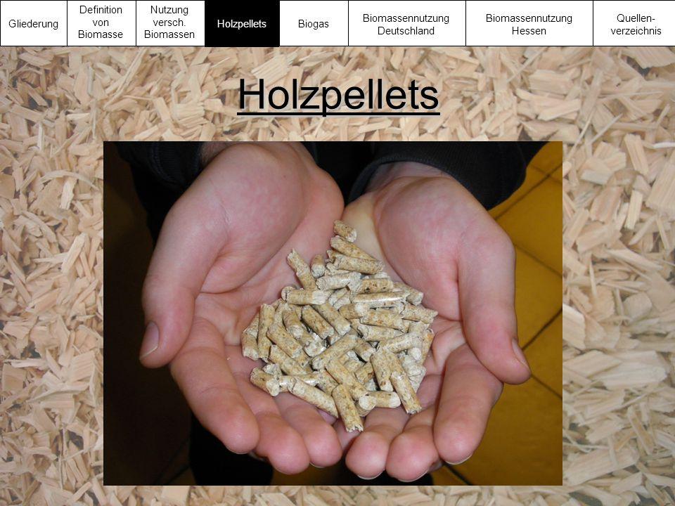 Holzpellets Gliederung Definition von Biomasse Nutzung versch. Biomassen Biomassennutzung Deutschland Biomassennutzung Hessen Quellen- verzeichnis Hol