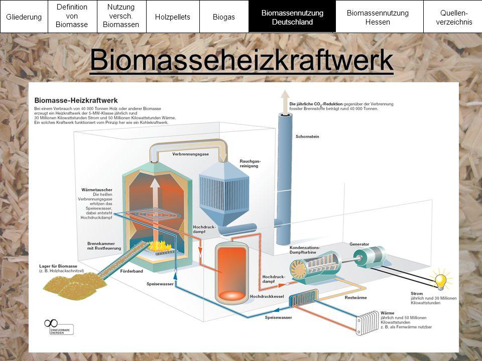 Biomasseheizkraftwerk Gliederung Definition von Biomasse Nutzung versch. Biomassen Biomassennutzung Deutschland Biomassennutzung Hessen Quellen- verze