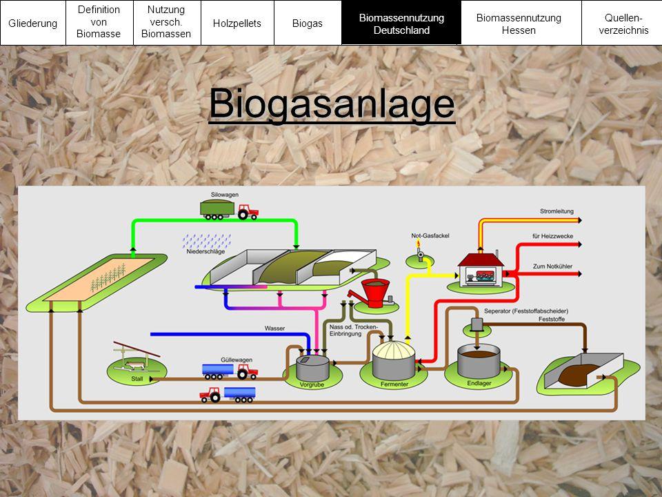 Biogasanlage Gliederung Definition von Biomasse Nutzung versch. Biomassen Biomassennutzung Deutschland Biomassennutzung Hessen Quellen- verzeichnis Ho