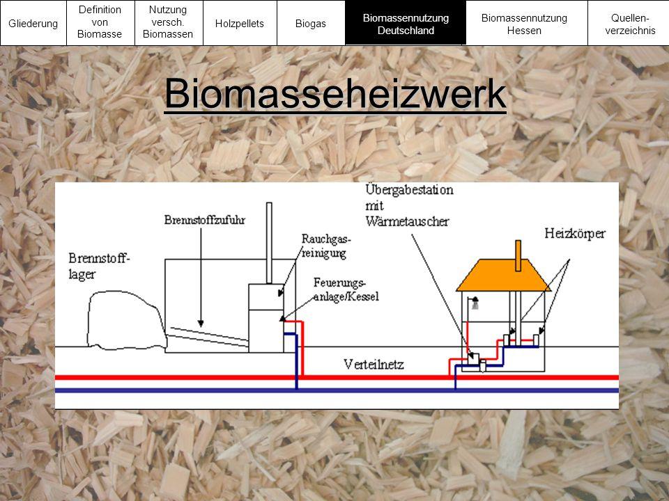 Biomasseheizwerk Gliederung Definition von Biomasse Nutzung versch. Biomassen Biomassennutzung Deutschland Biomassennutzung Hessen Quellen- verzeichni
