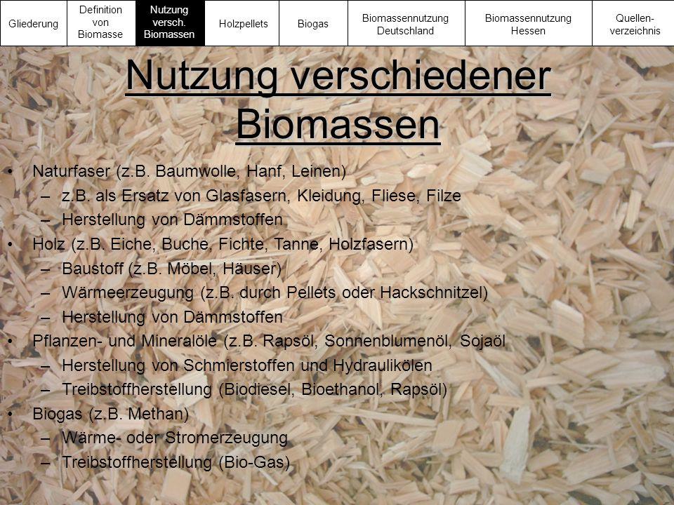 Nutzung verschiedener Biomassen Naturfaser (z.B. Baumwolle, Hanf, Leinen) –z.B. als Ersatz von Glasfasern, Kleidung, Fliese, Filze –Herstellung von Dä