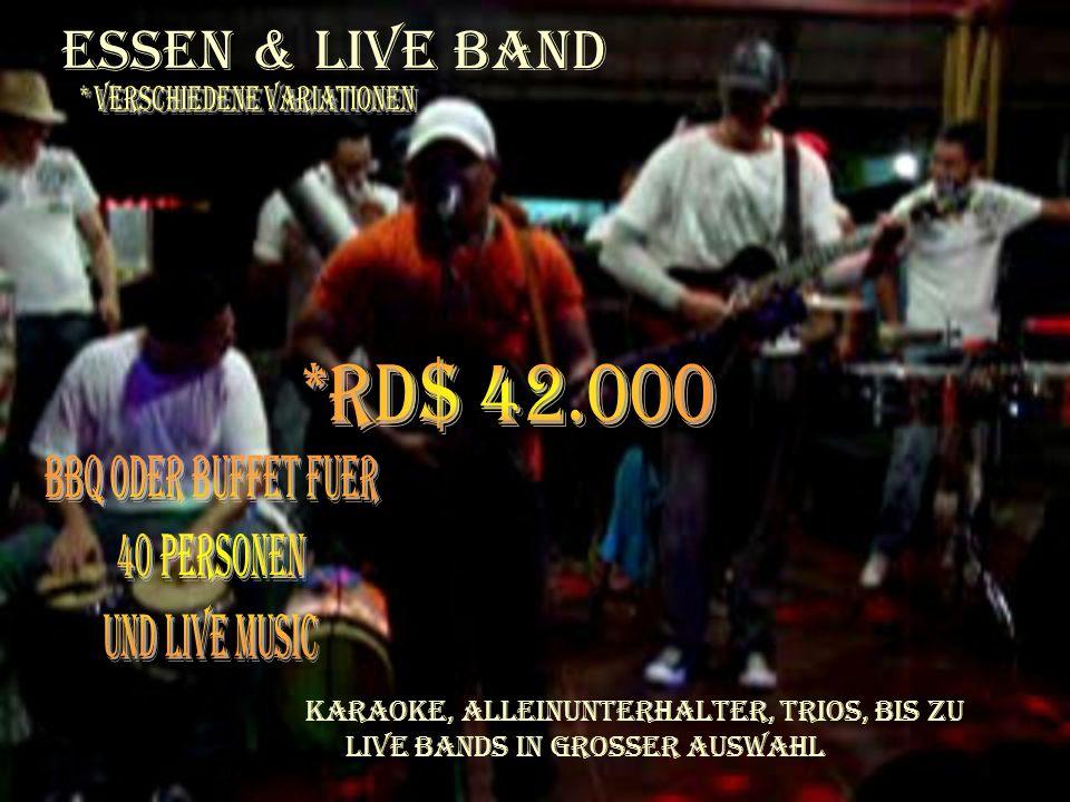 Essen & Live Band Karaoke, Alleinunterhalter, Trios, bis zu Live Bands in grosser Auswahl