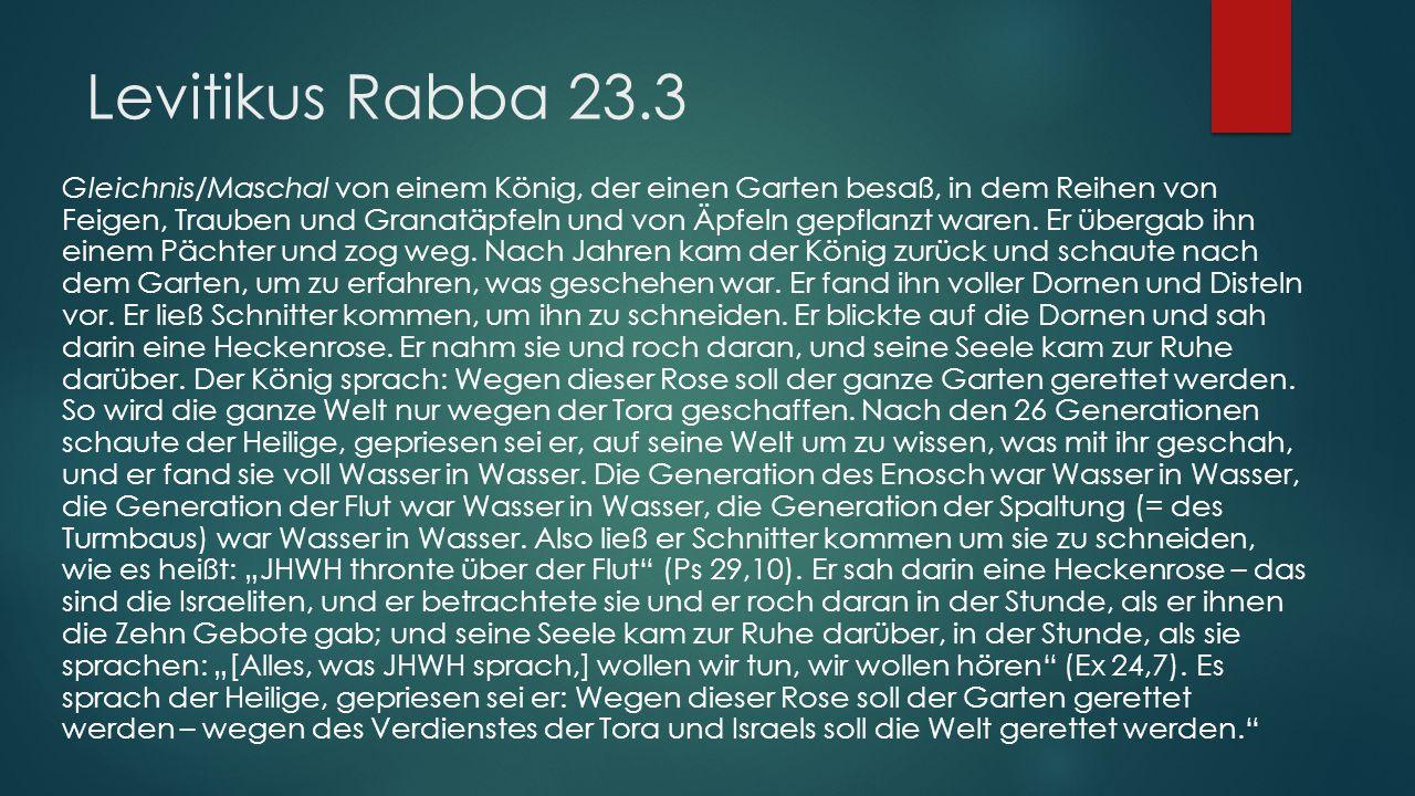 Levitikus Rabba 23.3 Gleichnis/Maschal von einem König, der einen Garten besaß, in dem Reihen von Feigen, Trauben und Granatäpfeln und von Äpfeln gepflanzt waren.