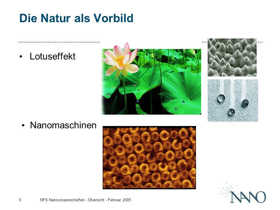 NFS Nanowissenschaften - Übersicht - Februar 20056 Die Natur als Vorbild Lotuseffekt Nanomaschinen