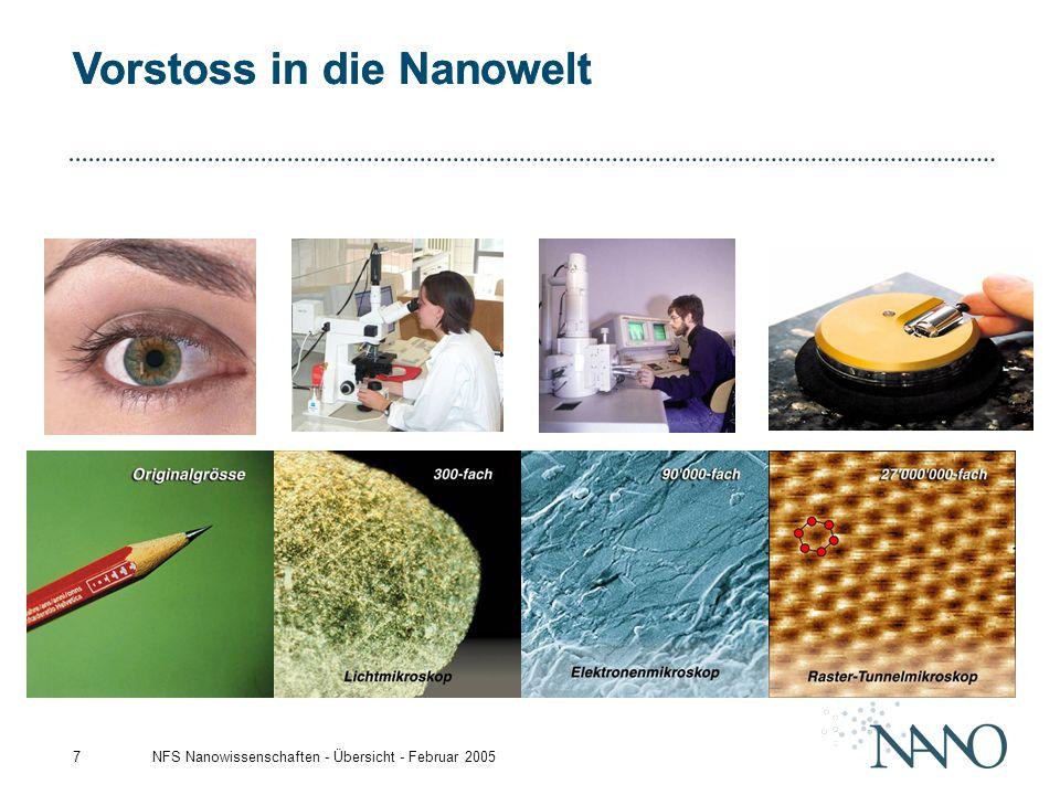 NFS Nanowissenschaften - Übersicht - Februar 20057 Vorstoss in die Nanowelt
