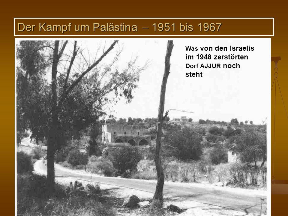 DPG-RG Osnabrück: N. Musharbash 16 Was von den Israelis im 1948 zerstörten Dorf AJJUR noch steht Der Kampf um Palästina – 1951 bis 1967