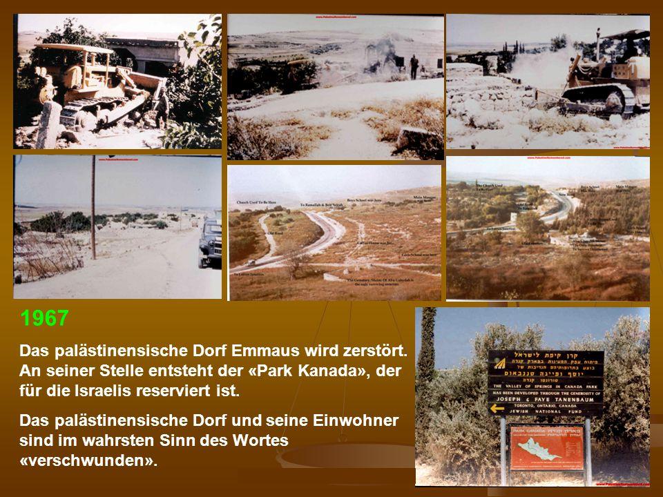 DPG-RG Osnabrück: N. Musharbash 34 1967 Das palästinensische Dorf Emmaus wird zerstört. An seiner Stelle entsteht der «Park Kanada», der für die Israe