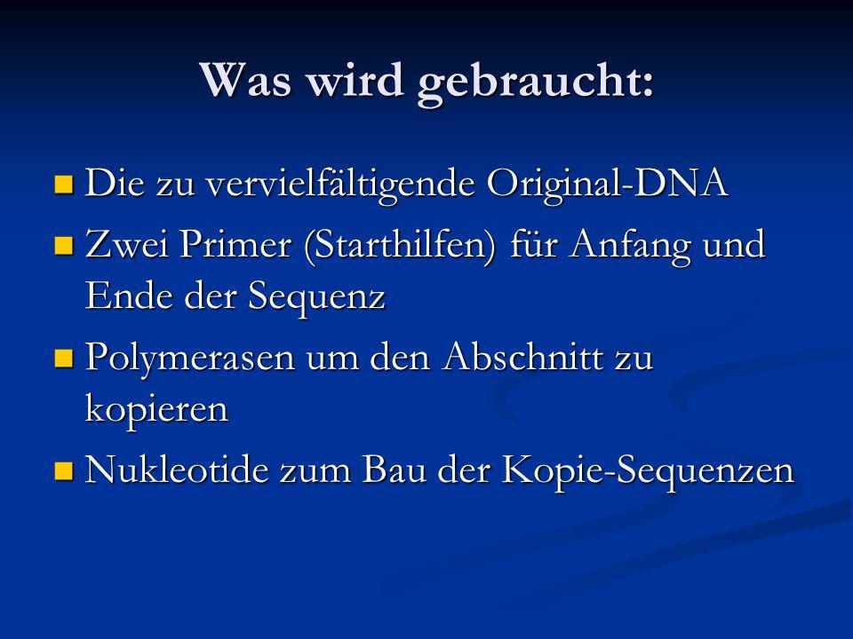 Was wird gebraucht: Die zu vervielfältigende Original-DNA Die zu vervielfältigende Original-DNA Zwei Primer (Starthilfen) für Anfang und Ende der Sequ