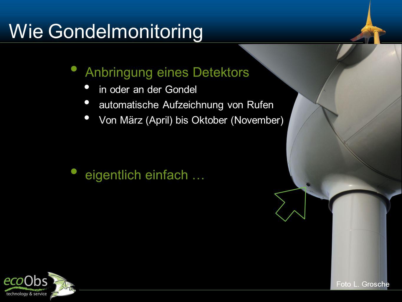 Wie Gondelmonitoring Anbringung eines Detektors in oder an der Gondel automatische Aufzeichnung von Rufen Von März (April) bis Oktober (November) eige