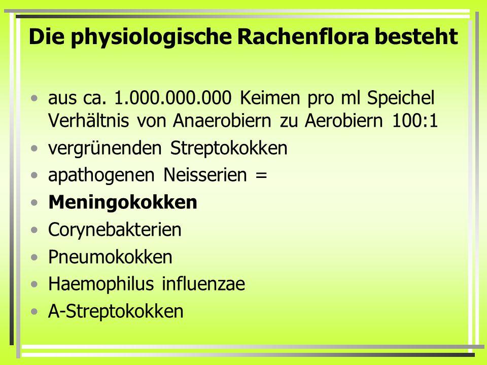 Die physiologische Rachenflora besteht aus ca.