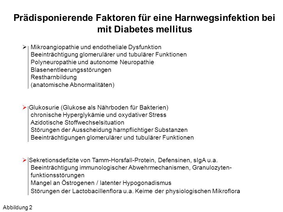 Risikofaktoren, die die Therapieentscheidung bei Diabetes mellitus beeinflussen Anamnestische Angabenhäufig rezidivierende / rekurrierende Infekte (> 3 Ereignisse/Jahr) Klinische Befunde unkompliziertes/kompliziertes Krankheitsbild Nachweis von Obstruktionen, manifeste Organschäden (Harnabflussstörung) Blasenentleerungsstörungen, Reflux Diabetologische Situation Neigung zu Hypo- oder Hyperglykämien - HbA1 c -Wert > 9% - BMI > 30 kg/m 2 Nachweis manifester diabetischer Spätkomplikationen Renale Situation Manifeste/progrediente Nephropathie Albumin-/Proteinurie Einschränkung der GFR (<50 ml/min.) Glukosurie Mikrobiologische AspekteKeimzahl, Erreger, Mischinfektion, Resistenz- /Sensibilitätsverhältnisse (ESBL, MRSA) Tabelle 1