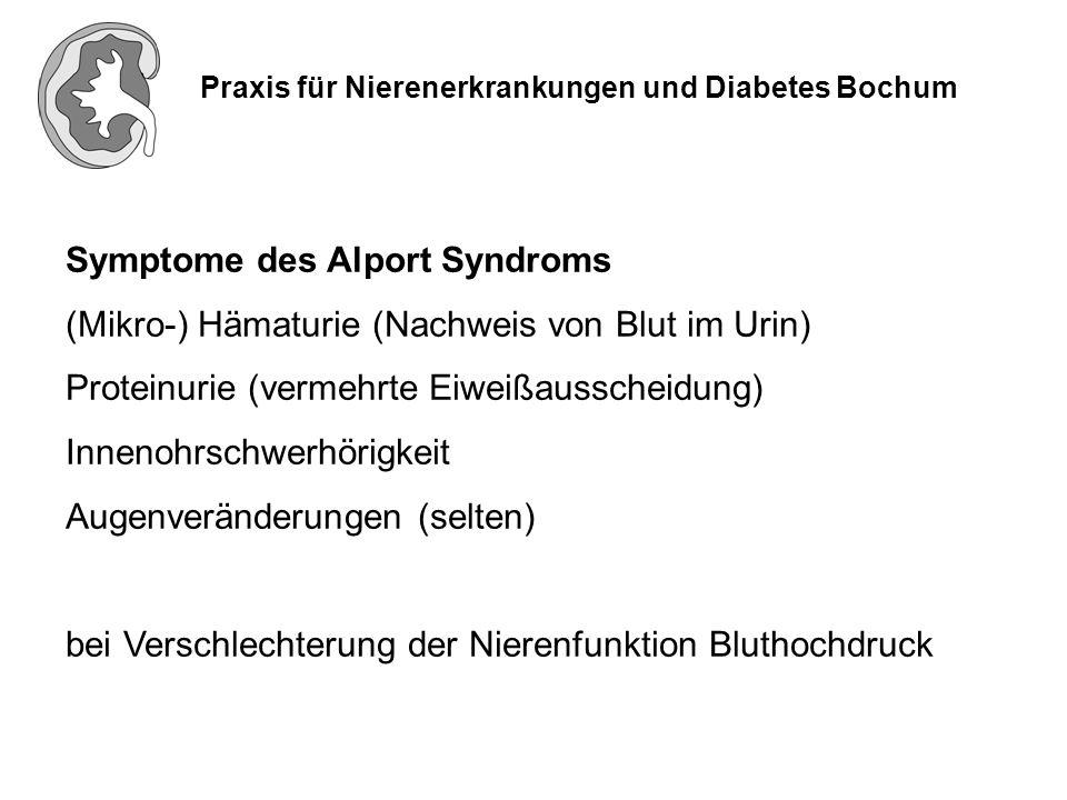 Praxis für Nierenerkrankungen und Diabetes Bochum Symptome des Alport Syndroms (Mikro-) Hämaturie (Nachweis von Blut im Urin) Proteinurie (vermehrte E