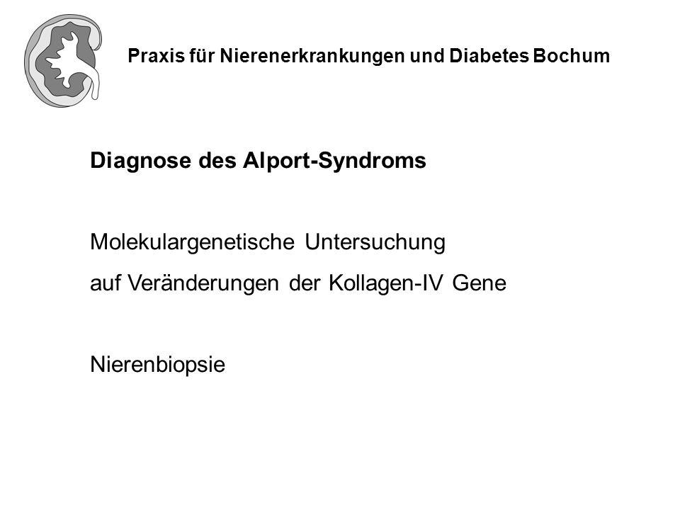 Praxis für Nierenerkrankungen und Diabetes Bochum Diagnose des Alport-Syndroms Molekulargenetische Untersuchung auf Veränderungen der Kollagen-IV Gene